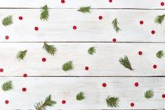 конструкция рождества предпосылок вы Ягоды калины и спруса на белом w Стоковые Изображения
