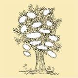 Конструкция фамильного дерев дерева с пустыми рамками иллюстрация вектора