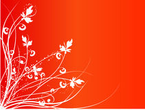 конструкция флористическая Стоковое фото RF