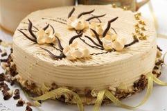 конструкция sakura торта Стоковые Фото