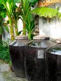 Контейнеры вина Wu zhen Стоковое Изображение