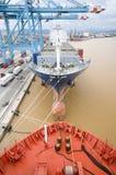 Контейнеры загрузки грузового корабля Стоковые Изображения RF