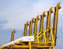 контейнер вытягивает шею гавань Стоковые Изображения RF