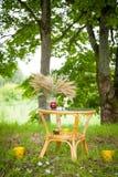 Контейнер с зелеными ростками Стоковые Фотографии RF