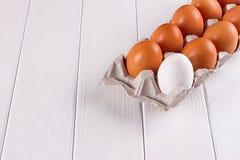 Контейнер 10 яичек Белизна яичка коричневого цвета одного 9 яичек Стоковые Изображения
