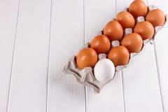 Контейнер 10 яичек Белизна яичка коричневого цвета одного 9 яичек Стоковые Изображения RF