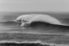 Контрасты текстуры брызга волны черные белые Стоковые Изображения