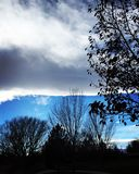 Контраст между небом и деревьями Стоковые Фотографии RF