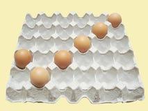 Контрольная пометка от яичек в бумажном подносе Стоковая Фотография RF