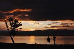 Контур дерева и 2 людей на предпосылке брига Стоковые Фото