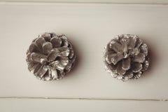 2 конуса сосны на деревянном столе Стоковое фото RF