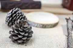 2 конуса сосны на деревянном Стоковое Изображение