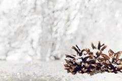 3 конуса сосны на снеге Стоковая Фотография