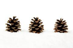 3 конуса сосны рождества на снеге в линии Стоковые Фотографии RF