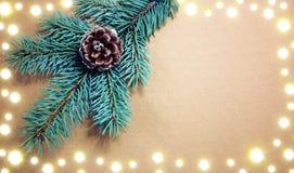 Конусы ели на изолированной ветви спруса зеленого цвета Стоковые Фото