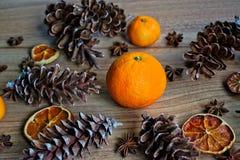 Конусы плодоовощ и сосны Стоковое фото RF