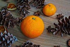 Конусы плодоовощ и сосны Стоковое Изображение RF