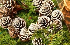Конусы сосны для украшения рождества в теплом тоне Стоковое Изображение RF