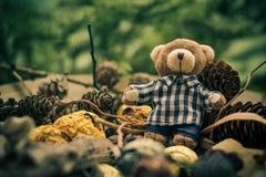 Конусы хвой плюшевого медвежонка рождества приходя зеленые Стоковое Фото