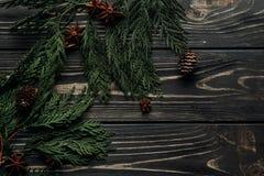 Конусы циннамона и сосны анисовки на зеленых ветвях ели на деревенском wo Стоковые Фото