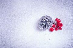 Конус белой сосны и украшение ягод рябины на сезон зимы, концепция рождества стоковые изображения