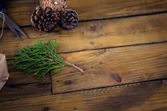 Конус ели и сосны на деревянном столе Стоковые Изображения RF