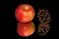 Конус Яблока и сосны Стоковые Изображения RF