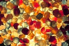 Конфета, красочный, взбрызнутая с напудренным сахаром курчаво Стоковая Фотография RF