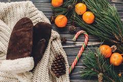 Конфета положения квартиры рождества свитер с перчатками и анисовкой и сосной Стоковая Фотография
