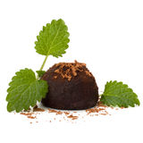 Конфета трюфеля шоколада Стоковые Фотографии RF