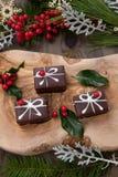 Конфета шоколада рождества и красные ягоды стоковая фотография rf