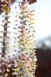конфеты цветастые Стоковые Фото