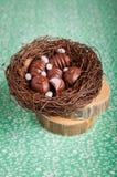 Конфеты шоколада пасхального яйца форменные в гнезде Стоковое Изображение