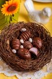 Конфеты шоколада пасхального яйца форменные в гнезде Стоковое Фото