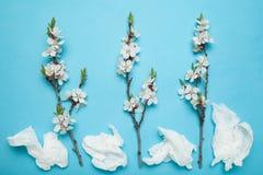 Концепция аллергии Цветки и жидкий нос стоковое фото rf