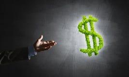 Концепция банка и вклада представила зеленым символом доллара на конкретной предпосылке Стоковое Изображение
