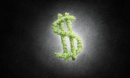 Концепция банка и вклада представила зеленым symb доллара Стоковые Фотографии RF
