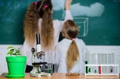 Концепция биологии Микроскоп и пробирки на таблице в классе Ребенк около предпосылки доски школы defocused стоковое фото rf