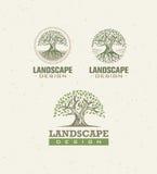 Концепция вектора дизайна ландшафта творческая Дерево с корнями внутри знака круга органического установленного на предпосылку бу бесплатная иллюстрация