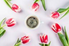 Концепция весны с тюльпанами Стоковые Изображения RF