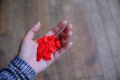 Концепция влюбленности дня валентинки Красный Харт в руке с космосом экземпляра стоковая фотография