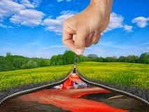 Концепция - восприятие окружающей среды зависит Стоковые Изображения RF