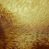 Концепция выдуманного мира: Изображение макроса красочной волнистой выбитой стеклянной поверхностной текстуры стоковые фотографии rf