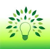 Концепция дерева электрической лампочки и зеленая энергия иллюстрация вектора