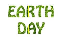 Концепция дня земли мира Свежая и зеленая текстура лист дерева Стоковая Фотография RF