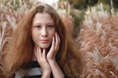 Концепция естественных взгляда и красоты Стоковая Фотография RF