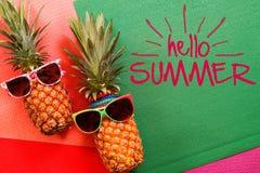Концепция лета и праздника Аксессуары моды ананаса битника Стоковое Изображение