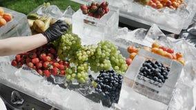 Концепция здорового и здорового диетического питания сезонного замедленного движения ягод 4k Фермер распространяет скомплектованн стоковое фото