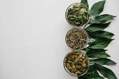 Концепция здорового образа жизни Много различных ингридиентов для делать травяной чай внутри кружек Стоковые Изображения