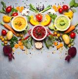 Концепция здоровых овощных супов Стоковое Изображение